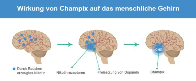 Wirkung von Champix